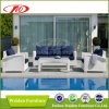 Sofa Dh-819 de rotin de meubles de patio