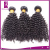 Softest Style 및 Hot Selling Natural Hair