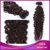 Ponta chinesa do prego da extensão do cabelo Curly lig pre