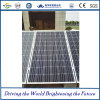320W Crystalline Solar Modules per Power Terra-basato Plant