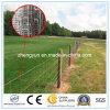 網の動物機構または牧草地のヒンジ接合箇所電流を通されたフィールド塀を囲う動物園の網