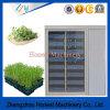 Máquina da alfalfa da alta qualidade/Sprout de feijão Growing que faz o Seeding da máquina/botão que faz a máquina