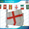 Polyester Fabric Bunting Flags mit Staatsflagge Designs (NF11F06020)