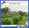 Sample 자유로운 PVC Coated Steel Chain Link Fencing 또는 Galvanized Chain Link Fence/Chain Link Fencing