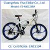 Bicyclette électrique d'alliage de magnésium de montagne pour l'adulte