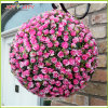 Sfera decorativa del fiore del giardino di alta qualità 2015