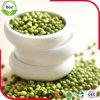 2016 neues Getreide-frische getrocknete grüne Mungobohnen 3.2-3.8mm