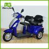 3車輪の2つのシートが付いている安定した電気Trikeのスクーター