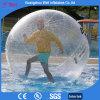 Bola que recorre del agua humana clara para la venta