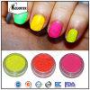 蛍光釘の顔料の粉、明るいカラーネオンネイル・エナメルの顔料の製造者