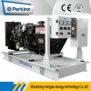 тепловозный генератор 10kVA с одиночной и трехфазным