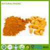 Poudre belle d'enduit de nourriture biologique pour des tablettes et des pillules