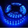 LED Decorating Light mit Blue LED Strip