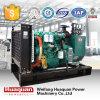портативные резервные электрические тепловозные генераторы 40kw для сбываний