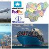 Consolideer de Diensten aan de Gemakkelijke Scheepvaartmaatschappij van Afrika