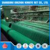 Rede de segurança verde do polietileno do andaime da construção do PE 100g