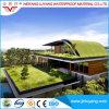 Membrana impermeable modificada Sbs material bituminosa del betún para la azotea del edificio