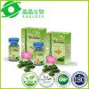 Fornecedor de Guangzhou que Slimming comprimidos da dieta