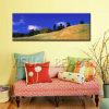Пейзаж Art Print горы на Canvas (SJMD5975)