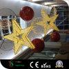 Lumière de motifs d'étoile de DEL 3D pour la décoration de Noël
