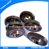 Corrugated Machinery를 위한 전송 Spur Gear