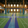 O revestimento interno/Badminton do PVC ostenta o revestimento