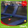 Крытое Trampoline Beds с Basketball Hoop