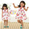 Vestido do aniversário para o bebé, vestidos das meninas, vestuário do bebê