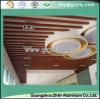 Diseño contemporáneo del techo del bafle