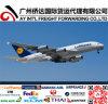 Air global expédiant à Francfort