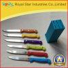 Faca de cozinha por atacado do aço inoxidável 7PCS das facas ajustada (RYST0126C)