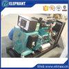 электростанция генератора двигателя 30kw 38kVA Yto тепловозная