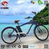 성인을%s 전기 바닷가 E 자전거 함 자전거 눈 스쿠터