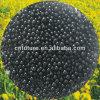 Organische Zwarte Amino van de Meststof van de Stikstof