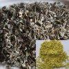 Foie protégeant Debitterness Dihydromyricetin (DMY) 50%, 80%, 90%, extrait de thé de vigne de 98%