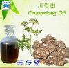 100%の中国薬オイルのChuanxiongオイル