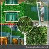 Haies artificielles de jardin de barrière en plastique synthétique