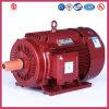 C.A. Motor de 315kw Ie2 Low Voltage Three Phase High Efficiency