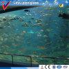 Aquariumのための高品質Acrylic Window