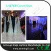 LEIDEN van de Partij van het huwelijk RGB Dance Floor