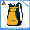 Le voyage en gros folâtre le sac à dos extérieur de sac de gymnastique de loisirs