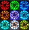 가득 차있는 Color Flexible LED Strip 5m/Roll RGB Christmas Lighting
