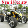 250cc del EEC de Road Vehicle