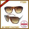 F7290 vendem por atacado óculos de sol de Turtoise da boa qualidade