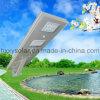 30W de vente chauds imperméabilisent le réverbère IP65 solaire