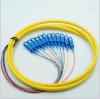 Tipo 12 Pigtail do Pigtail Sc/APC do pacote do Sc da fibra óptica dos núcleos