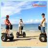 2014 neues Electric Chariot Scooter, Cheap Electric Scooter mit CE/FCC/RoHS Certification