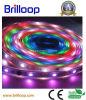 SMD5050 Resin&Tube IP68 impermeabilizan la luz de tira flexible del LED (BL-STPA30YGT)