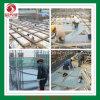 PVC Pallet para Concreto