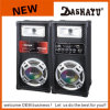 Altavoz del sistema PA 2.0 Bluetooth del Karaoke de DJ (XD6-6014)